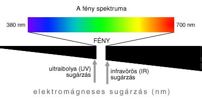 polikróm látás tornaterem és látás